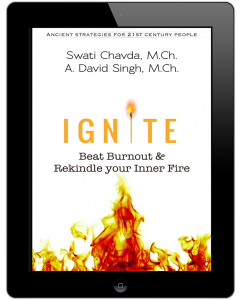 Ignite-iPad-A.-David-Singh-822x1024